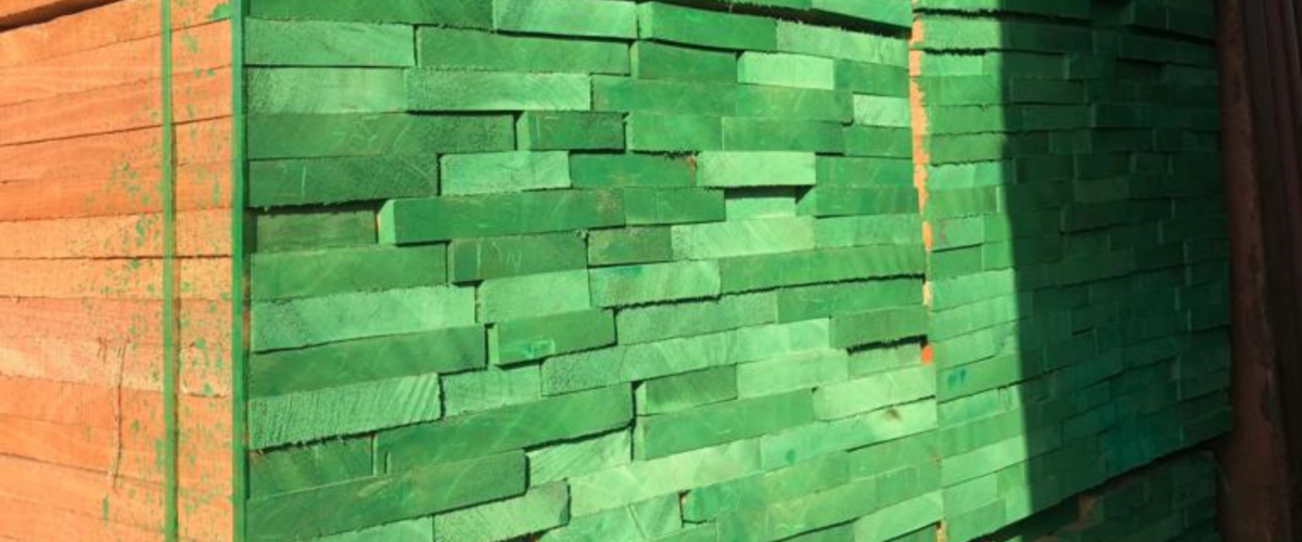 Gabon: balancing between a growing timber industry and the global environment